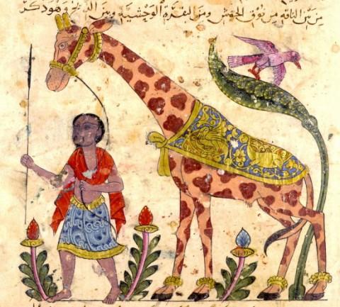 Рисунки животных. Арабская миниатюра